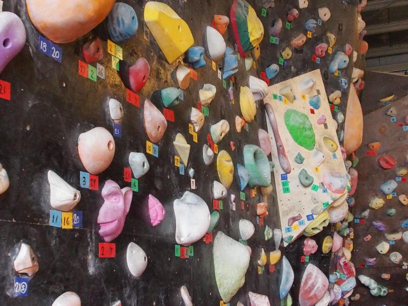 ボルダリングで登るときに使う石「ホールド」ってこういうヤツです。