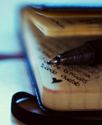 日記嫌いだった僕が安定して書けるようになった環境のはなし。